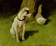 Arthur Heyer - White Persian Cat and Jack Russell