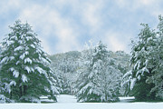 Winter Wonderland In The South Print by Michael Waters