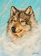 Pet Portraits Mixed Media Acrylic Prints - Wolf in a Snow Storm Acrylic Print by Nadine and Bob Johnston