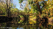 Barbara Bowen - Wooden Bridge over the Hillsborough...