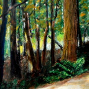 Michelle Calkins - Woodland Trail