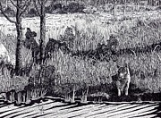 Wyoming Drawings - Wyoming Coyote by Doug Hiser
