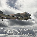 Dc3 Dakota   Workhorse by Pat Speirs