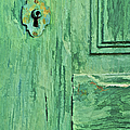 David Letts - Green Wood Weathered Door