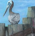 Cathy Lindsey - Pelican at Hatteras Ferry