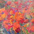 Nancy LaMay - Poppies