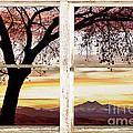 Sunset Tree Silhouette Abstract Picture Window View by James BO  Insogna