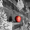 The Apple by Laurinda Bowling