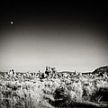 Troy Montemayor - Tufa Moonrise Mono...