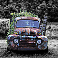 Bill Cannon - 1951 Ford Truck