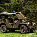 Inspired Nature Photography By Shelley Myke - 1953 M38A1 Army Jeep