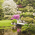 Asticou Azelea Garden - Northeast Harbor - Mount Desert Island - Maine by Keith Webber Jr