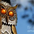 Faux Owl With Golden Eyes by Amy Cicconi