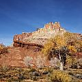 Mark Smith - Capitol Reef National ...