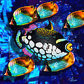 Edwin Rosado - 5 Butterfly fishes