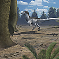 A Deinonychosaur Leaves Tracks by Emily Willoughby