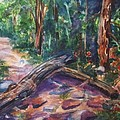 Ellen Levinson - A Path Through The Woods...