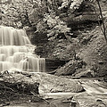 Phill  Doherty - A Vintage View of DeCew...