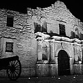 Stephen Stookey - Alamo by Night