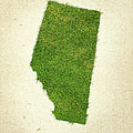 Alberta Grass Map by Aged Pixel
