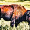 Ted Guhl - American Bison