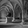 Clare Bambers - Ancient Cloisters.