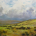 James R C Martin - April Showers - Dartmoor
