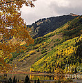 Janice Rae Pariza - Autumn in Colorado