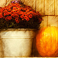 Mike Savad - Autumn - Pumpkin -...