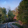 Lena Wilhite - Autumn Tracks In...