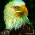 Gary Gingrich Galleries - Bald Eagle 54 Fractal