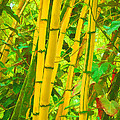 Art Brown - Bamboo Trees