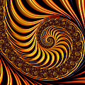 Matthias Hauser - Beautiful golden fractal...