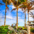 Debra and Dave Vanderlaan - Bicycles Under the Palms