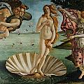 Tilen Hrovatic - Birth of Venus by Sandro...
