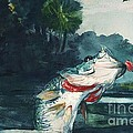 Winslow Homer - Black Bass