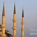 Robert Preston - Blue Mosque Spires in...