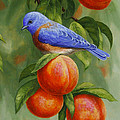 Crista Forest - Bluebird and Peaches...
