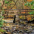 Patti Whitten - Bridge Over Honey Creek