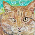 PainterArtist FINs husband Maestro - Brown Cat