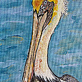 Ella Kaye - Brown Pelican