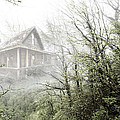 Debra and Dave Vanderlaan - Cabin in the Fog