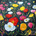 Carol Landry - California Poppies