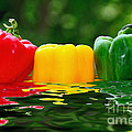 Kaye Menner - Capsicum in Water