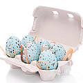 Carton Of Easter Eggs by Amanda And Christopher Elwell