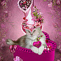 Carol Cavalaris - Cat In Valentine Candy...