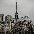 Marco Oliveira - Cathedral of Notre Dame...