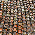 Alexandra Jordankova - Clay Tile Roof of a...