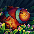 Scott Spillman - Clown Fish