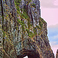 Linda Phelps - Coastal Rock Open Arch